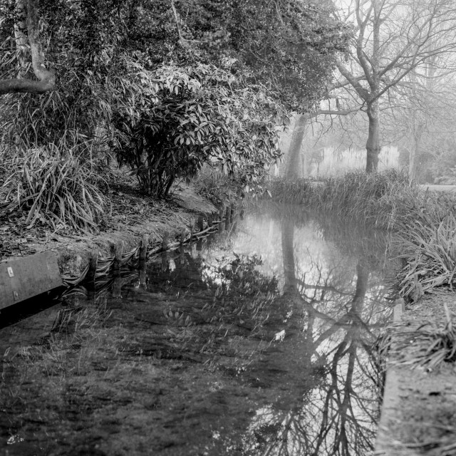 """Hampden Park, Eastbourne"" stock image"
