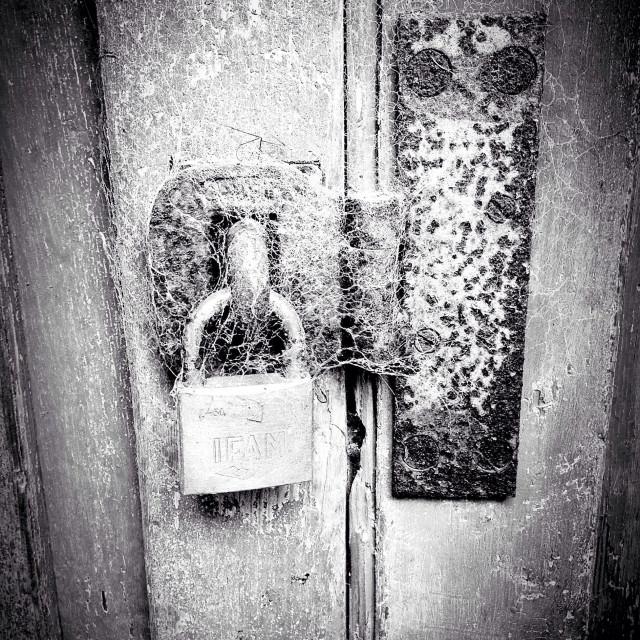 """Cobweb padlock on an old door"" stock image"