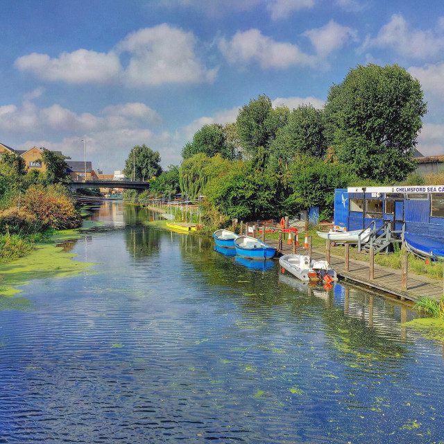 """""""Minutes from the bustling city centre, the River Chelmer looks quite serene."""" stock image"""