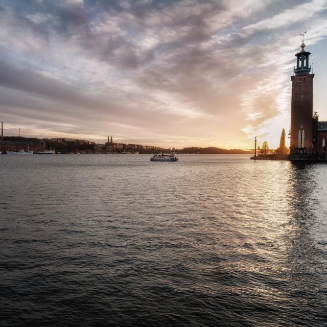 """Stockholm's city hall"" stock image"