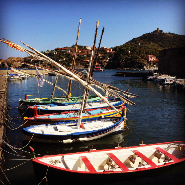 """Dhow sailboats at Collioure"" stock image"