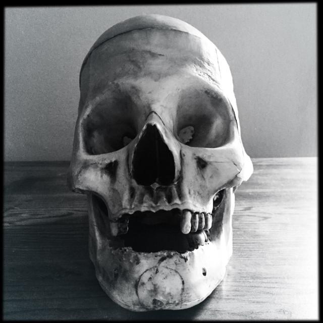 """""""Creepy skull"""" stock image"""