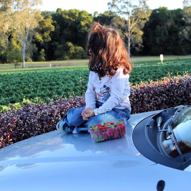 """""""A girl sitting to watch a strawberry field"""" stock image"""
