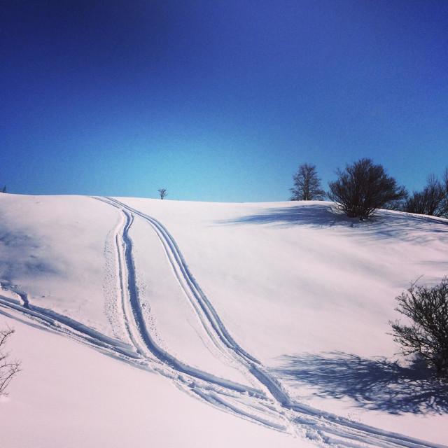 """""""Sunny winter day,Donovaly,Slovakia."""" stock image"""