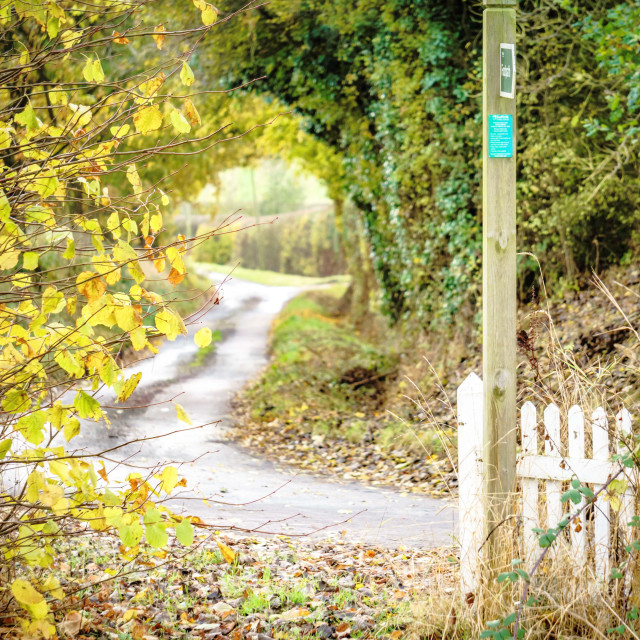 """Footpath leading to a leafy lane"" stock image"