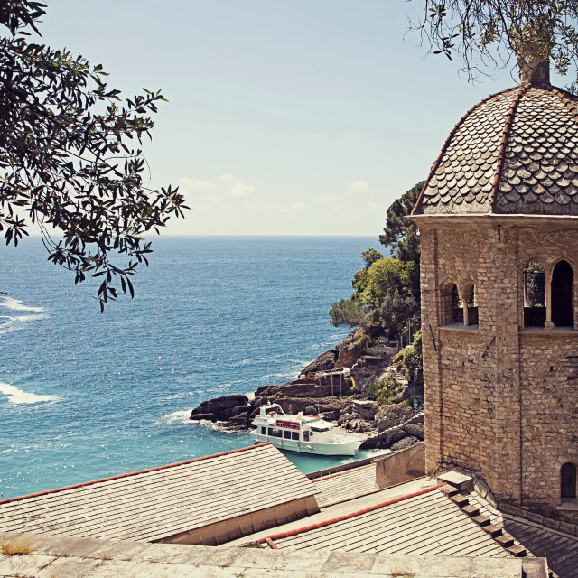 """""""Italy, San fruttuoso bay with the old abbey of X century"""" stock image"""