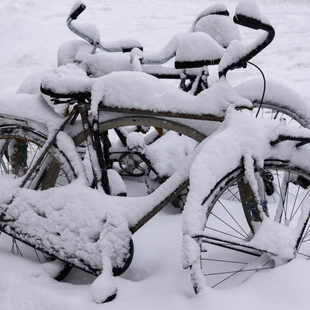 """""""Snow covered bicycles at the bike shed with two people walking at background."""" stock image"""