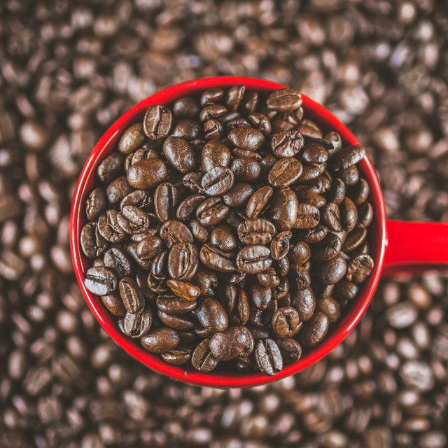 """""""Coffee beans in red cup, mug macro close up detailed well roasted in vivid colors overhead shot. Concept for freshness, morning, cozy lifestyle."""" stock image"""