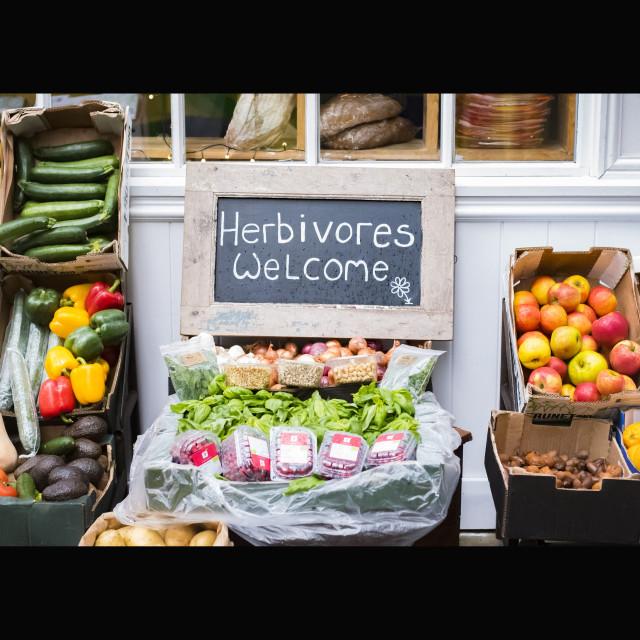 """""""Herbivores Welcome"""" stock image"""