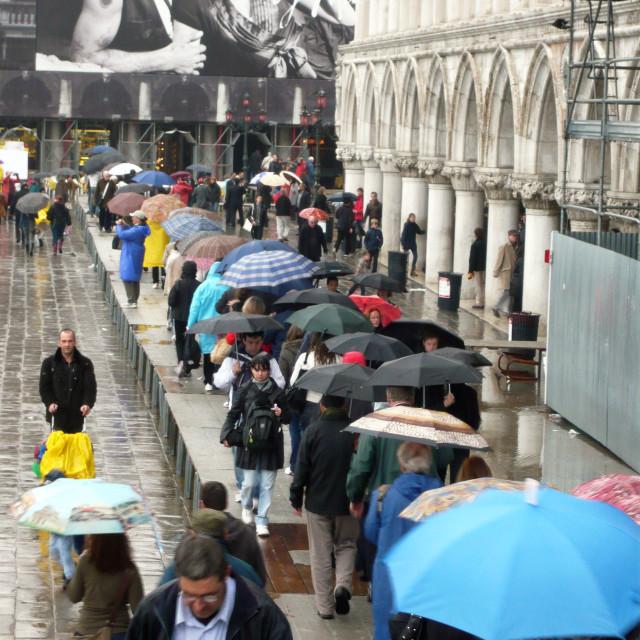 """Umbrellas, Venice."" stock image"