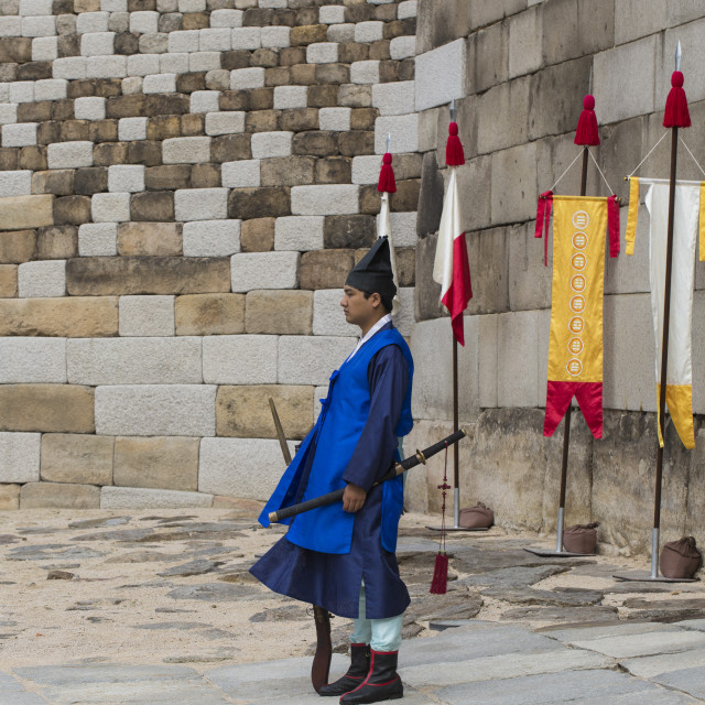 """SEOUL - OCTOBER 21, 2016: The Palace guard at Seoul Palace in Korea."" stock image"