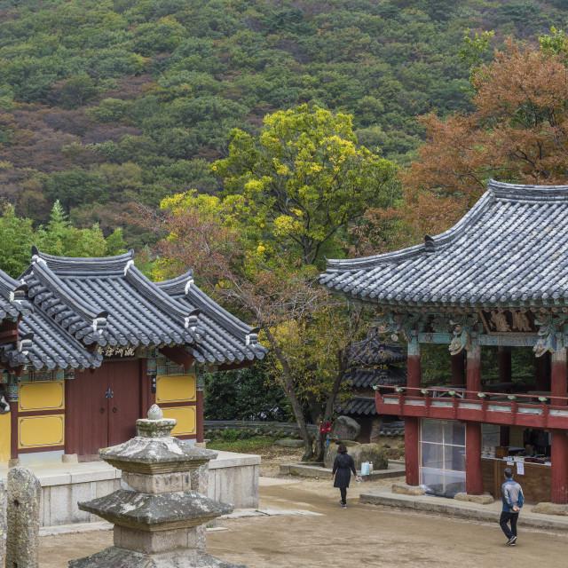 """""""BUSAN - OCTOBER 27, 2016: Beomeosa Temple in Busan, South Korea."""" stock image"""