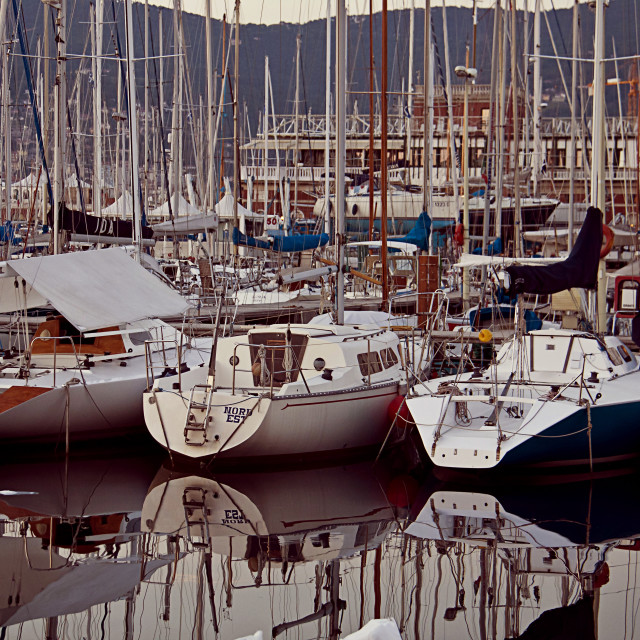 """""""Trieste,Italy - panoramic view of sailboats anchored in harbor at dusk"""" stock image"""