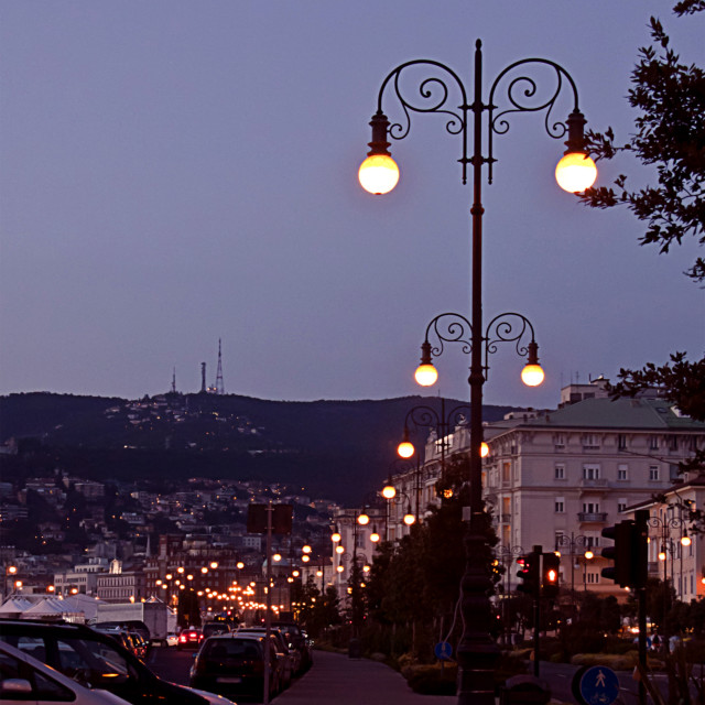 """""""Trieste, Italy - waterfront landscape at night"""" stock image"""