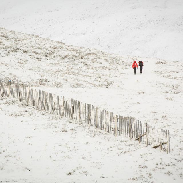 """Winter Snow"" stock image"