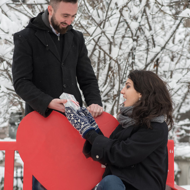 """""""couple in park on snowy day"""" stock image"""