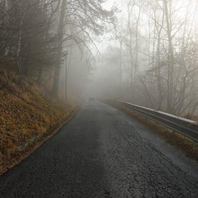 """""""Winter road in the fog"""" stock image"""