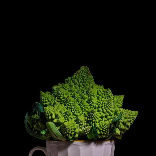 """Romanesco Broccoli in mug, closeup or Roman cauliflower with black black ground"" stock image"