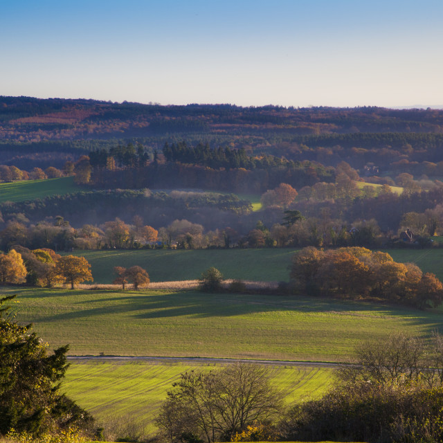 """Autumn Landscape Newlands Corner, Surrey, England"" stock image"