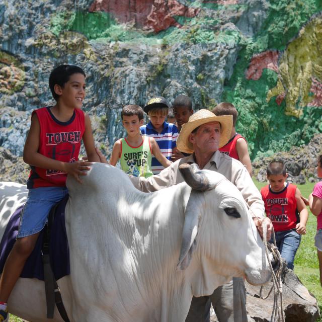 """School trip in Vinales"" stock image"