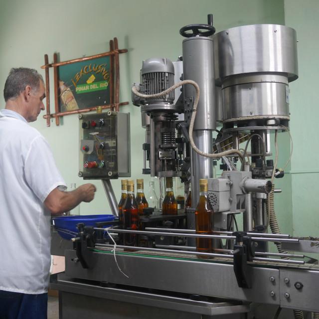 """""""Cuban liquor Guayabita del Pinar"""" stock image"""