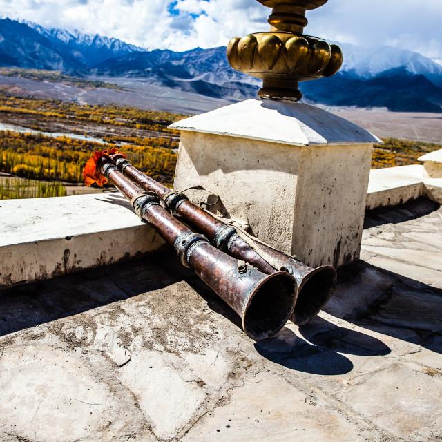 """""""Thiksey Monastery, Ladakh,India"""" stock image"""