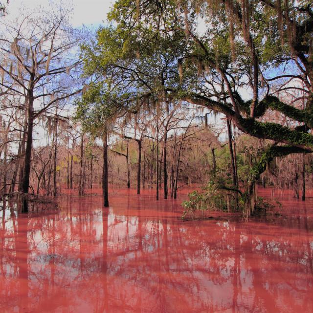 """River Flood"" stock image"