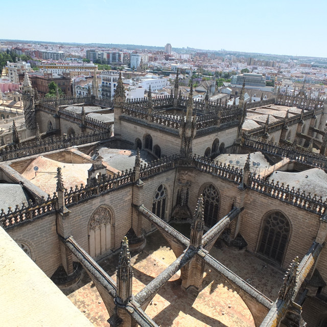 """""""Rooftops Of Seville Cathedral"""" stock image"""