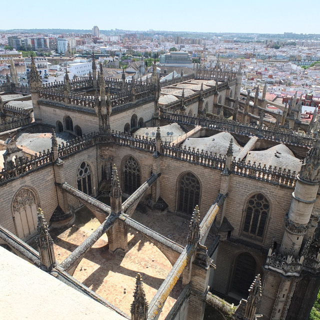 """""""Across The Rooftop Of Seville Cathedral"""" stock image"""