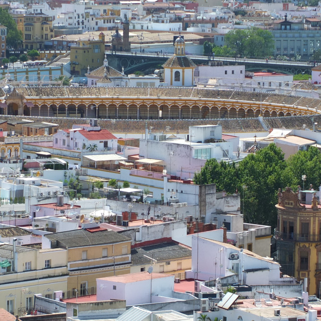 """Sevilla's Bullring From The Giralda"" stock image"