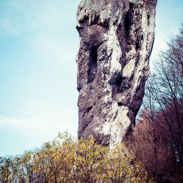 """National Park in Ojcow - Poland. Rock called Hercules' Club."" stock image"