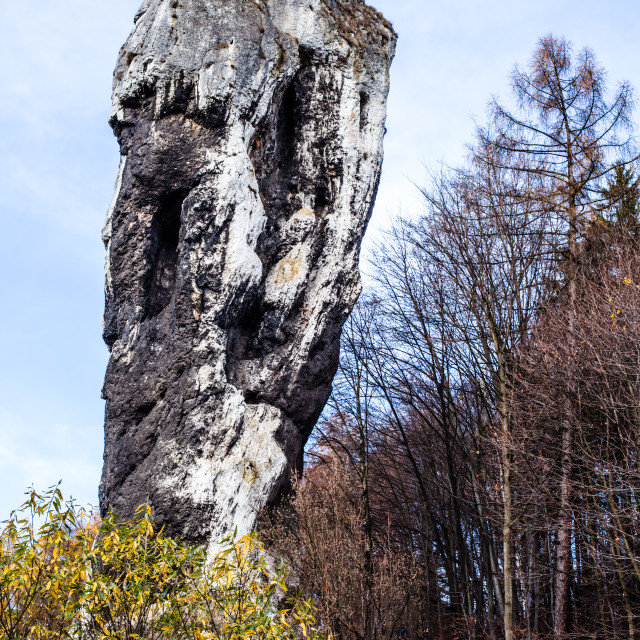 """""""National Park in Ojcow - Poland. Rock called Hercules' Club."""" stock image"""