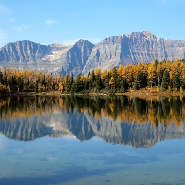 """autumn trees reflecting in mountain lake"" stock image"