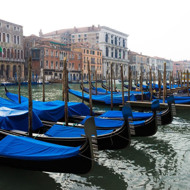 """Gondolas moored along the Grand Canal in Venice"" stock image"