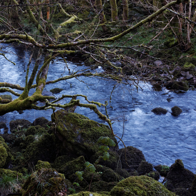 """""""Cold Blue Mountain Stream"""" stock image"""