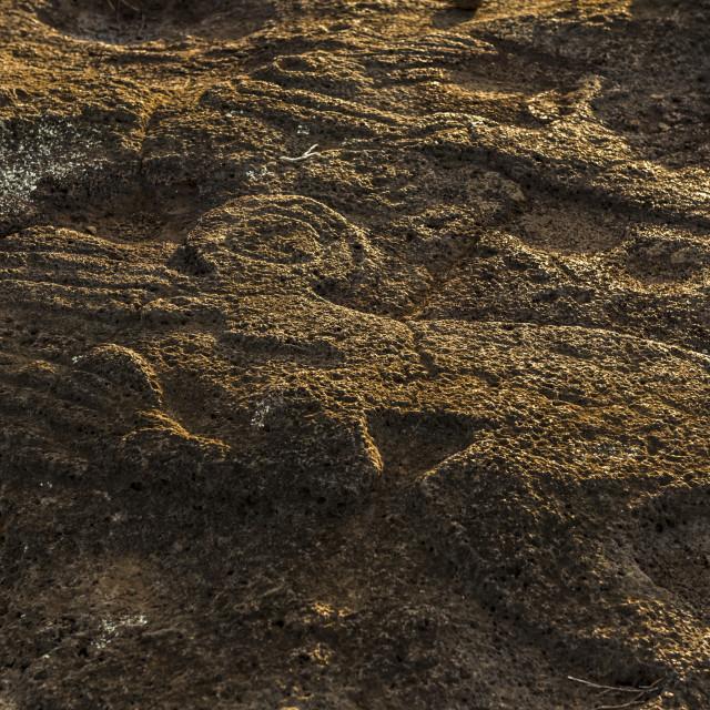 """Birdman Petroglyph, Easter island , Chile."" stock image"