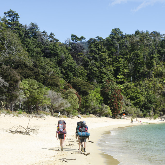 """Abel Tasman Hikers"" stock image"