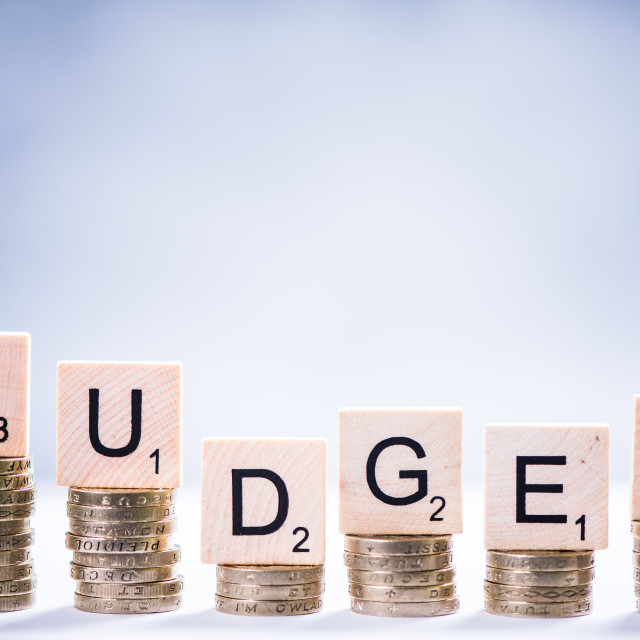 """""""Budget and saving concept with coins"""" stock image"""