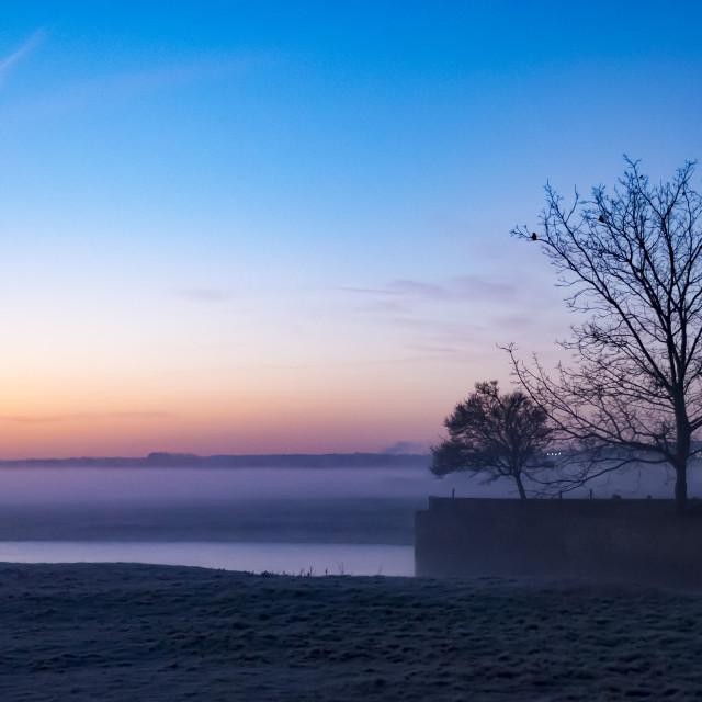 """Meadow Mist"" stock image"