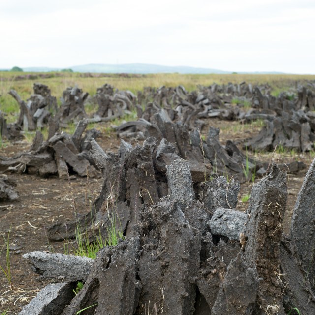 """peat stacked up in lines"" stock image"