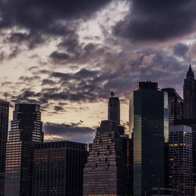 """Skyscraper buildings in Manhattan, New York City"" stock image"