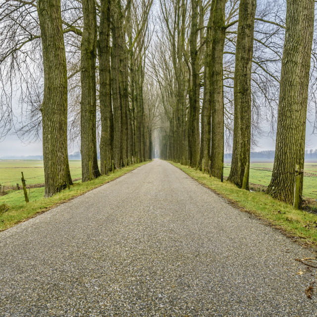 """Endless road three"" stock image"