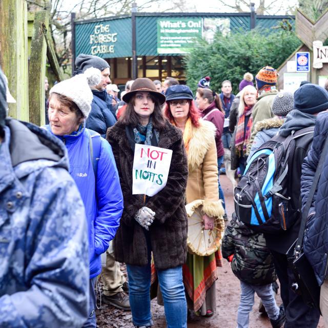 """Frack Free Protest in Sherwood Forest,UK"" stock image"