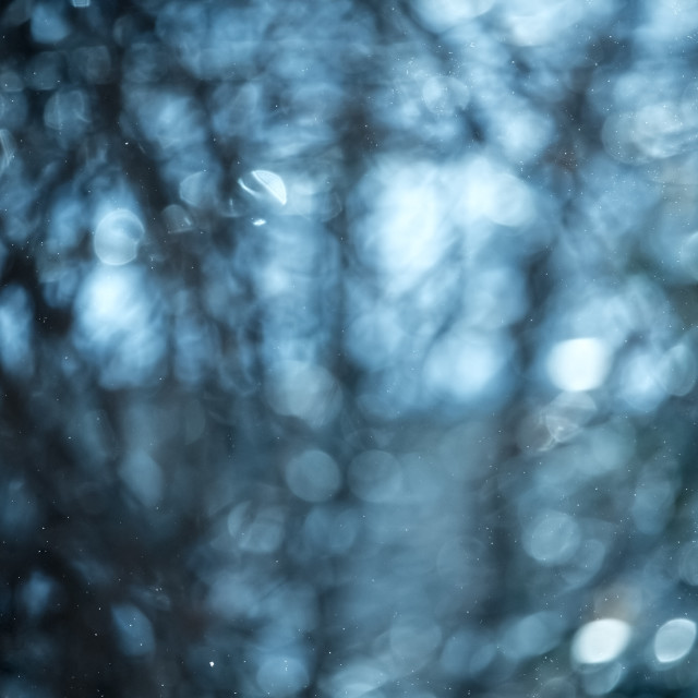 """Blue abstract and circular bokeh for background in winter"" stock image"