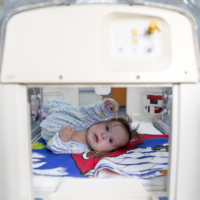 """""""Baby in an incubator reaching out"""" stock image"""