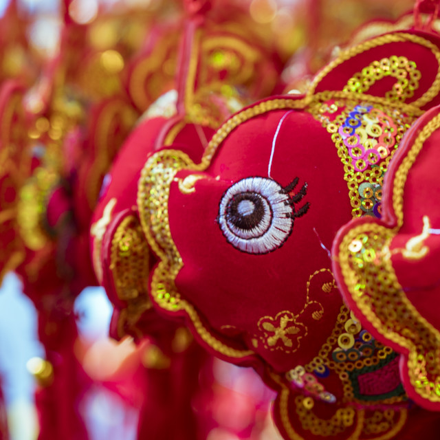 """Fish decoration for Chinese New Year"" stock image"