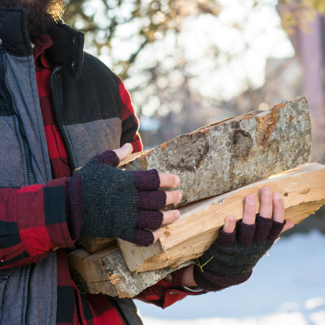 """""""Man carrying firewood in the yard"""" stock image"""