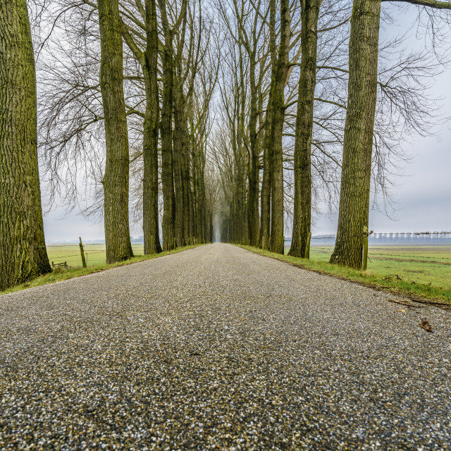 """""""Endless road five"""" stock image"""