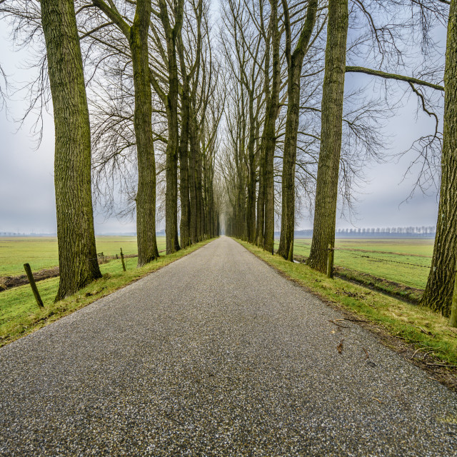 """""""Endless road two"""" stock image"""