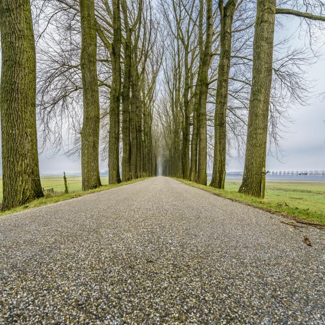 """Endless road six"" stock image"